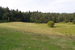 okolí Horních Vilémovic